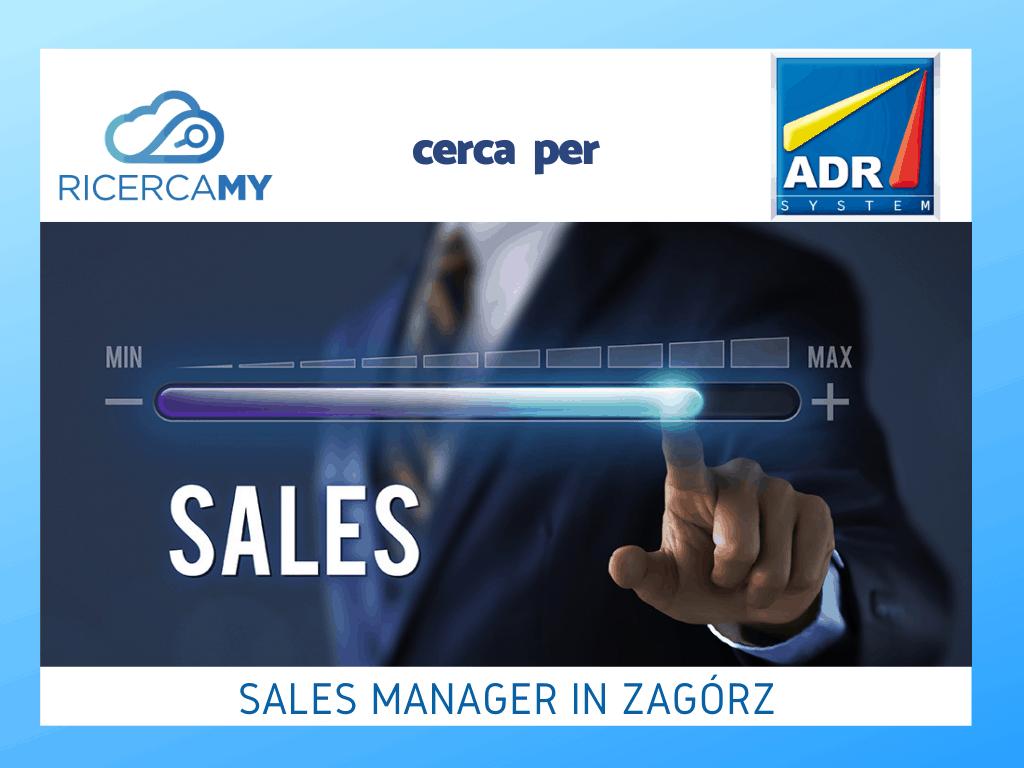 Sales Manager in Zagórz