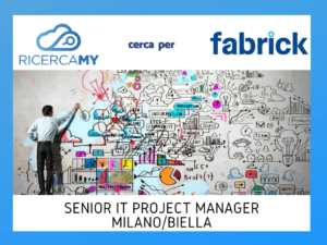 Senior IT Project Manager – Milano e Biella