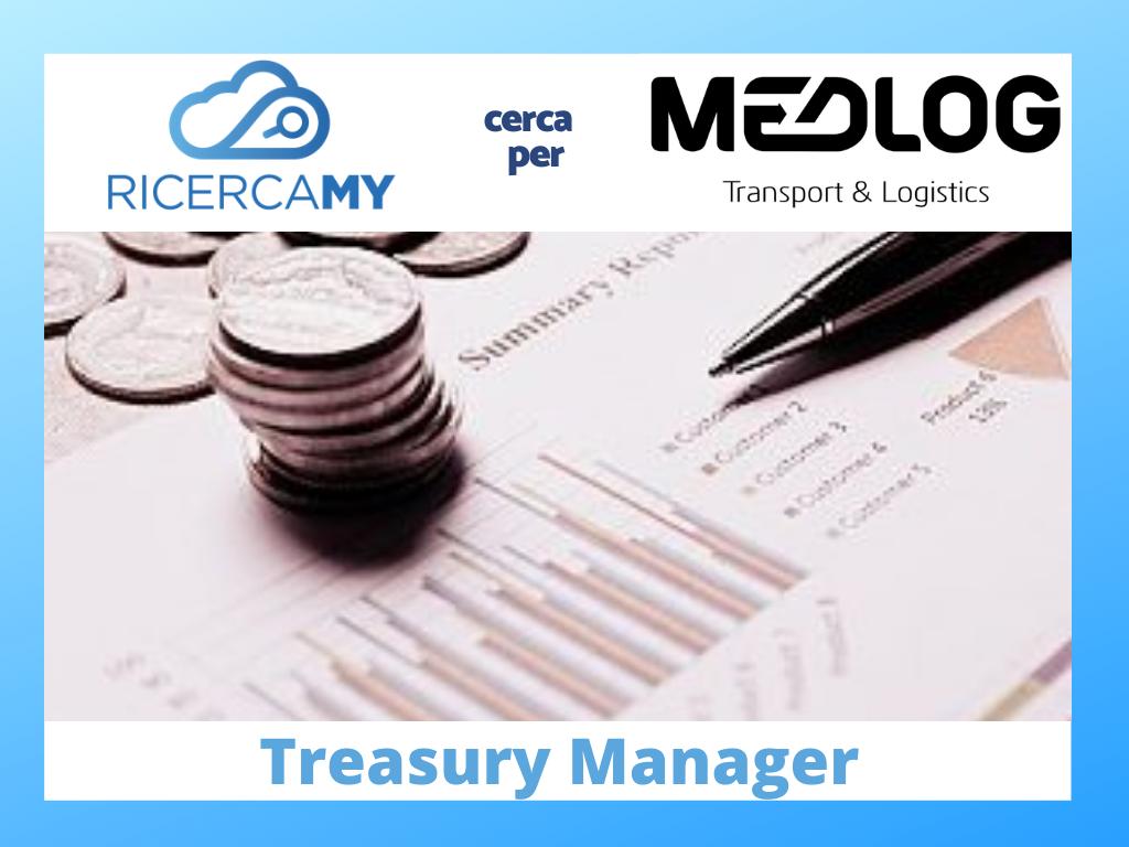 Treasury Manager