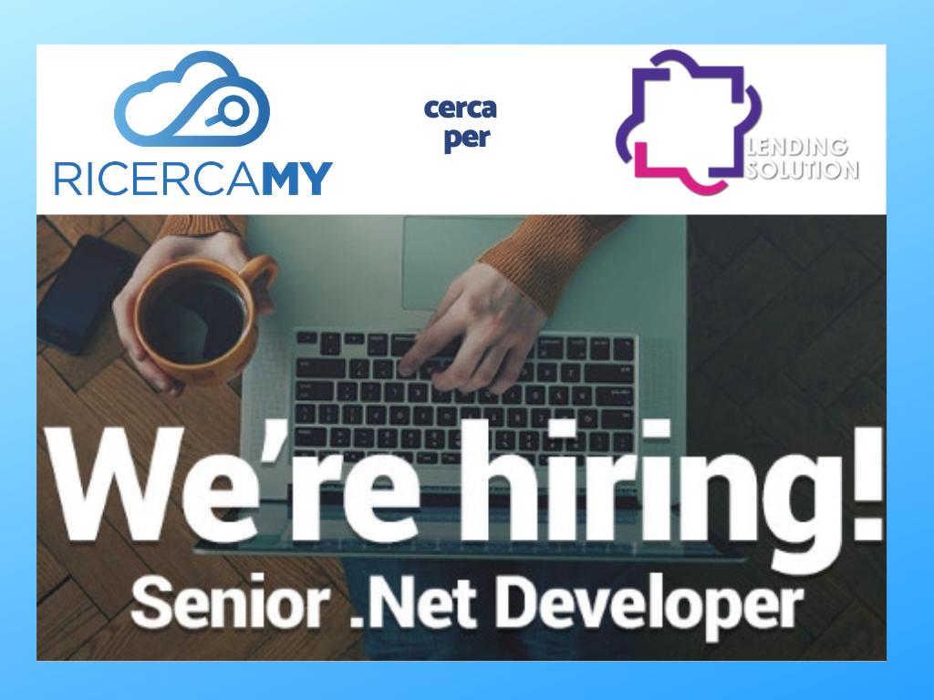 Senior Back End .Net Developer