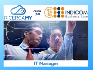 Read more about the article IT Manager