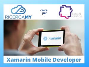 Xamarin Mobile Developer