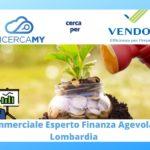 COMMERCIALE esperto in FINANZA AGEVOLATA – Lombardia