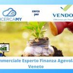 COMMERCIALE esperto in FINANZA AGEVOLATA – Veneto