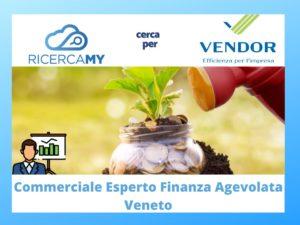 Read more about the article COMMERCIALE esperto in FINANZA AGEVOLATA – Veneto