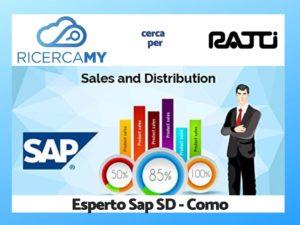 Read more about the article CONSULENTI SAP MODULO SD – COMO