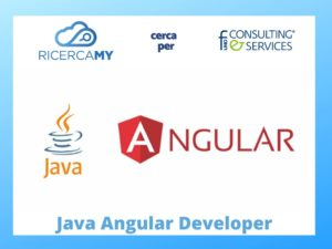 Read more about the article JAVA ANGULAR DEVELOPER